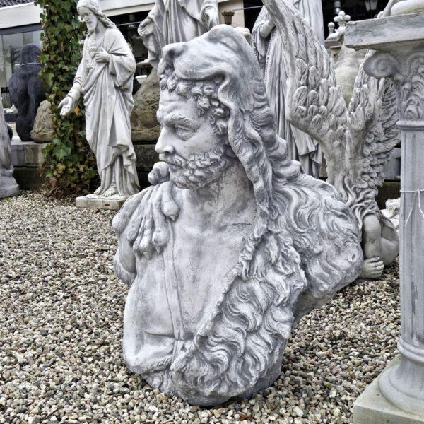Borstbeeld Hercules