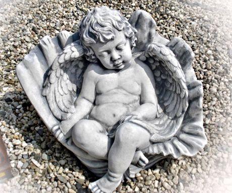 Engel slapend in schelp