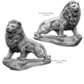 Löwe läuft groß