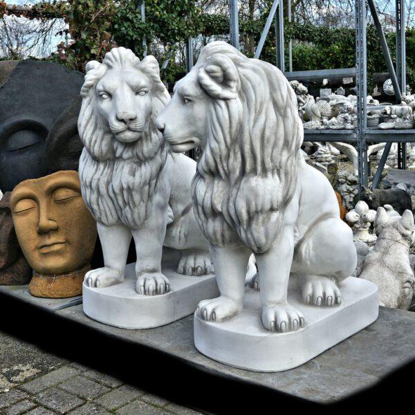 Löwe sitzt 96cm
